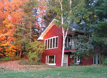 Lakeshore Cabin